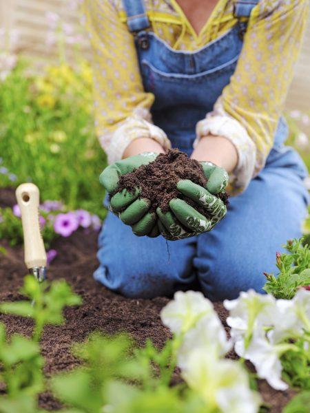 Soil HomeBase
